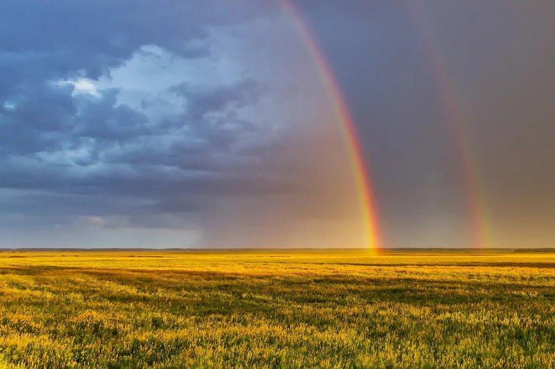 Фотография Лето из раздела пейзаж 5946002 - фото.сайт - Phot