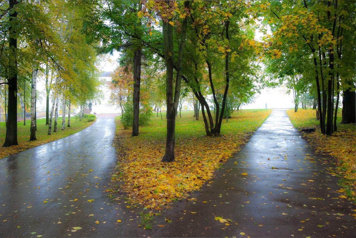 давно картинка дождя в парке повсюду
