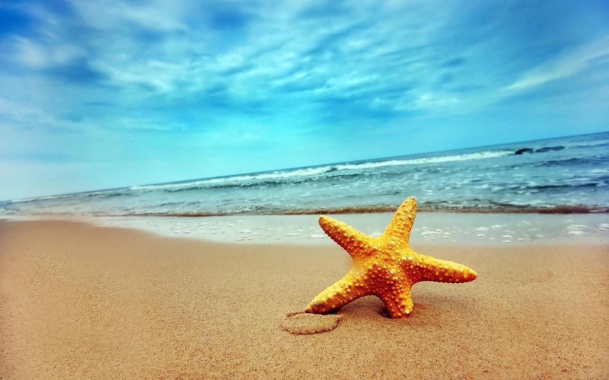 Красивая открытка с морем