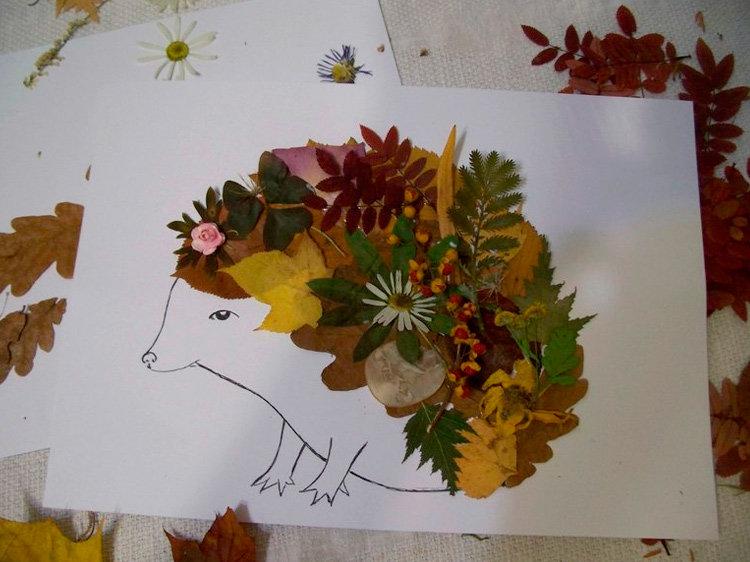 фото гербария из осенних листьев чтобы