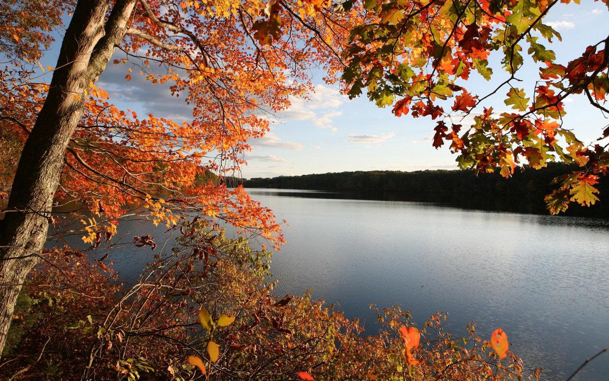 Осенний пейзаж фото и картинки
