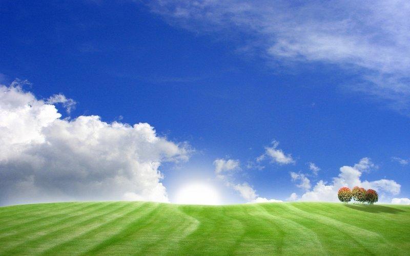 холмы, поле, Пейзажи, деревья, поля, трава, небо