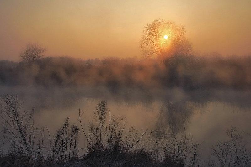 туман и тихая река