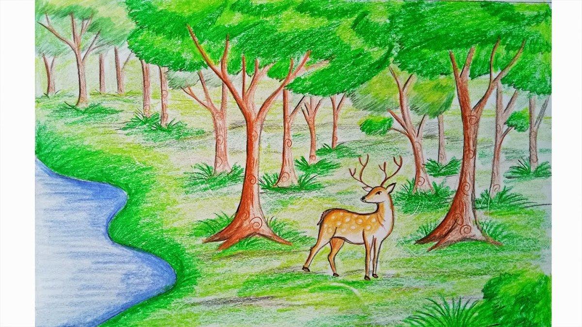 Приколами бабушки, смешанные леса рисунок детей 10 лет