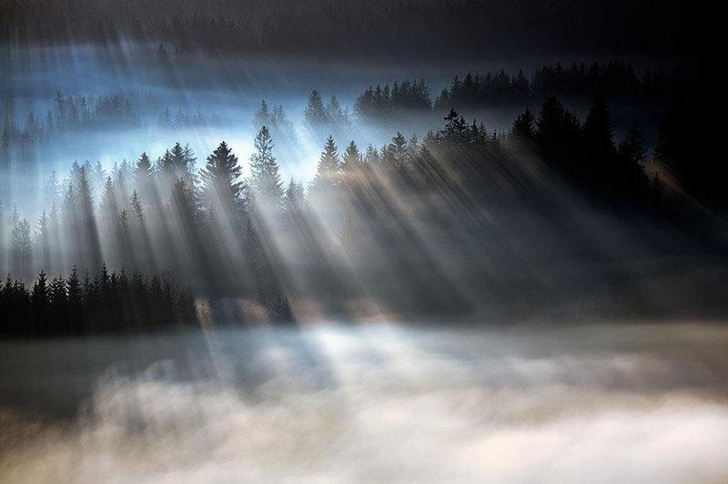 сказочный туман