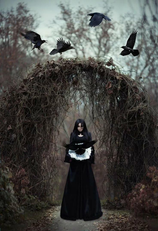 подруга ворон ведьма картинки прячут