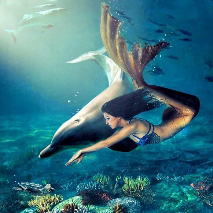 древним картинки русалочки с дельфином для