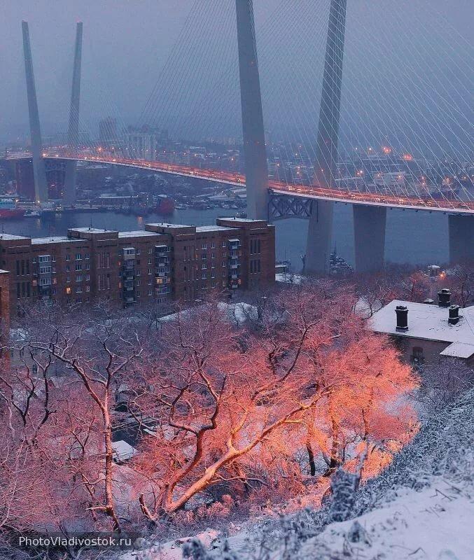 Фото владивостока зима