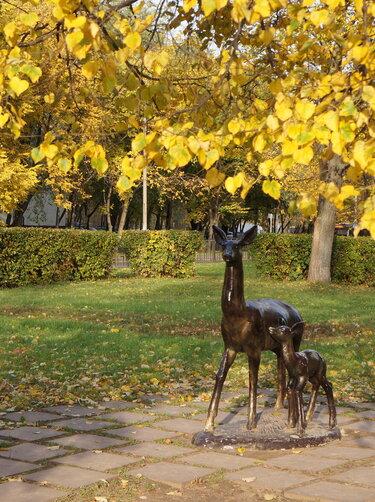 фото парка блонье смоленск