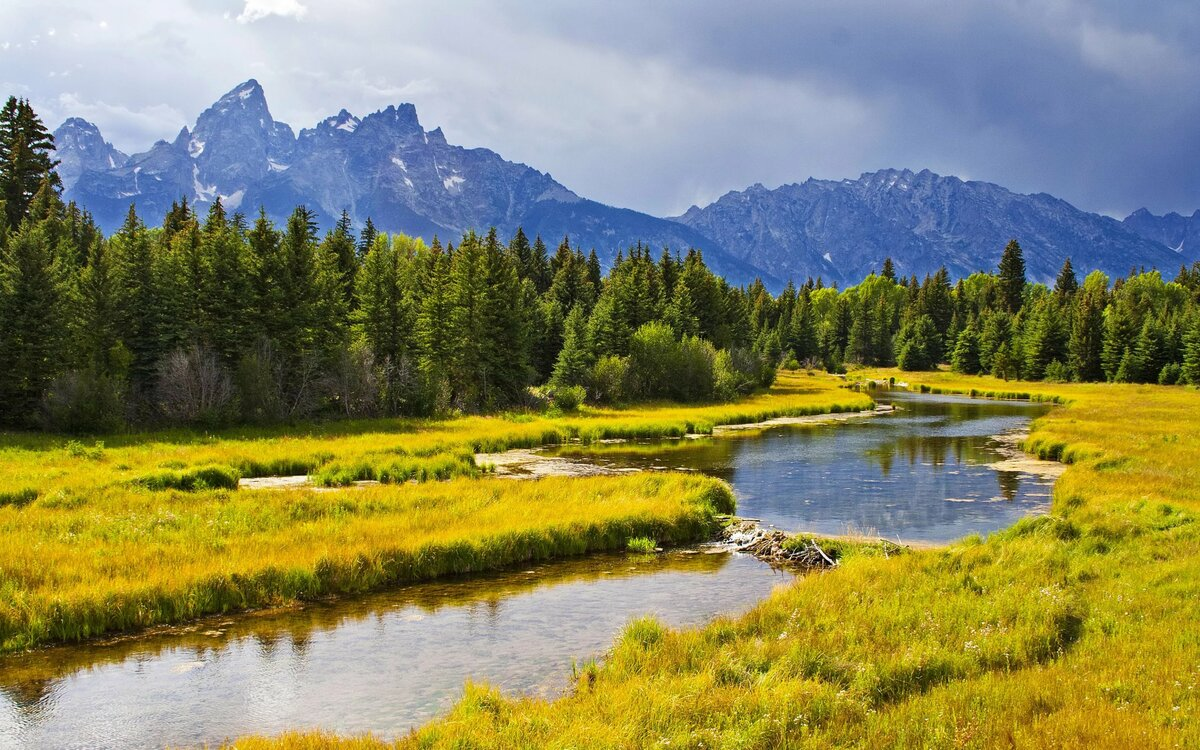 природная картинка озера с поляной так рада, что