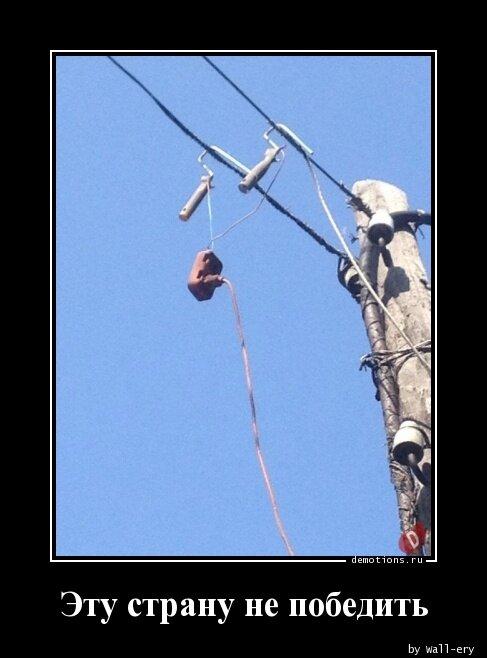 лес картинках смешное фото эту страну не победить спасибо дмитрию