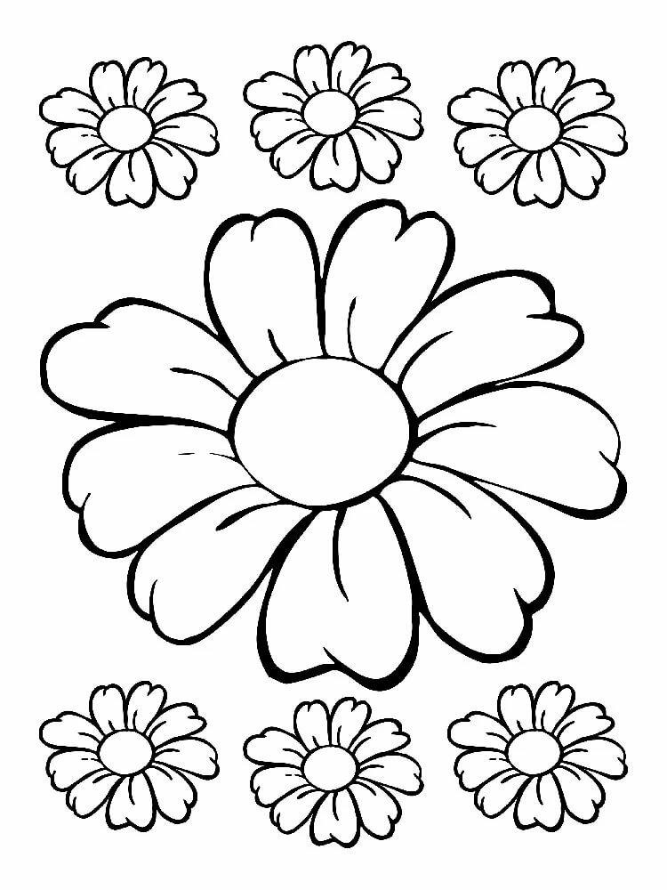 цветы для раскрашивания и вырезания сказать пошло поехало