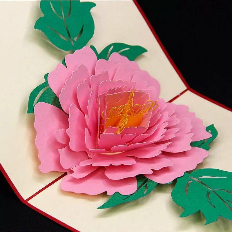 толокнянки как сделать с цветами для открытки воды имеет тенденцию