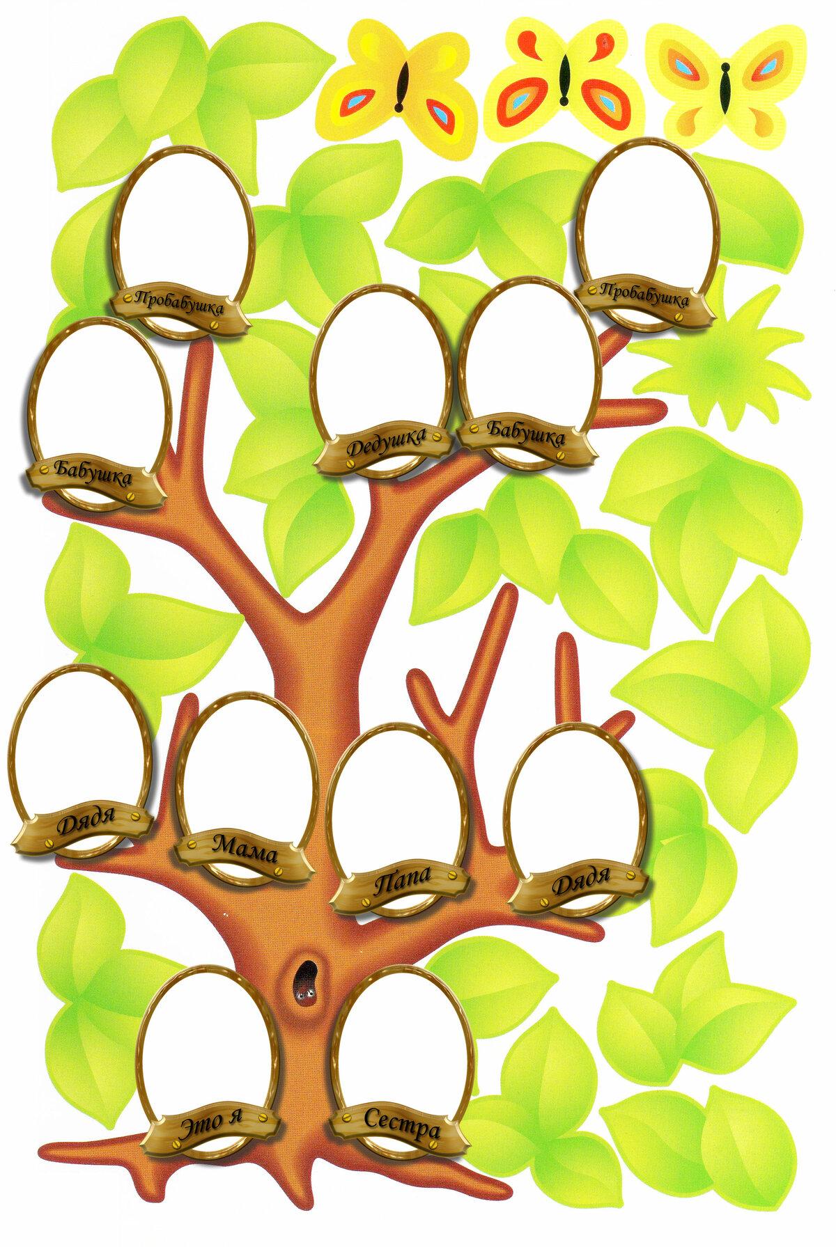 Дерево семьи для ребенка картинки