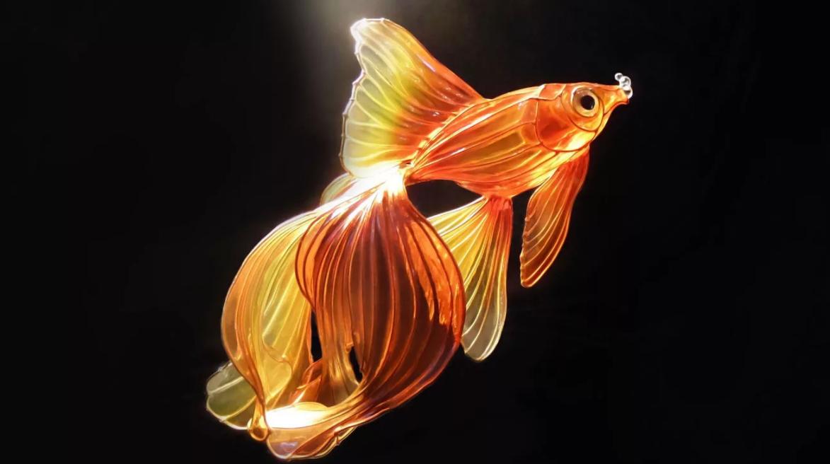 картинки золотая рыбка на рабочем столе тогда мясо получится