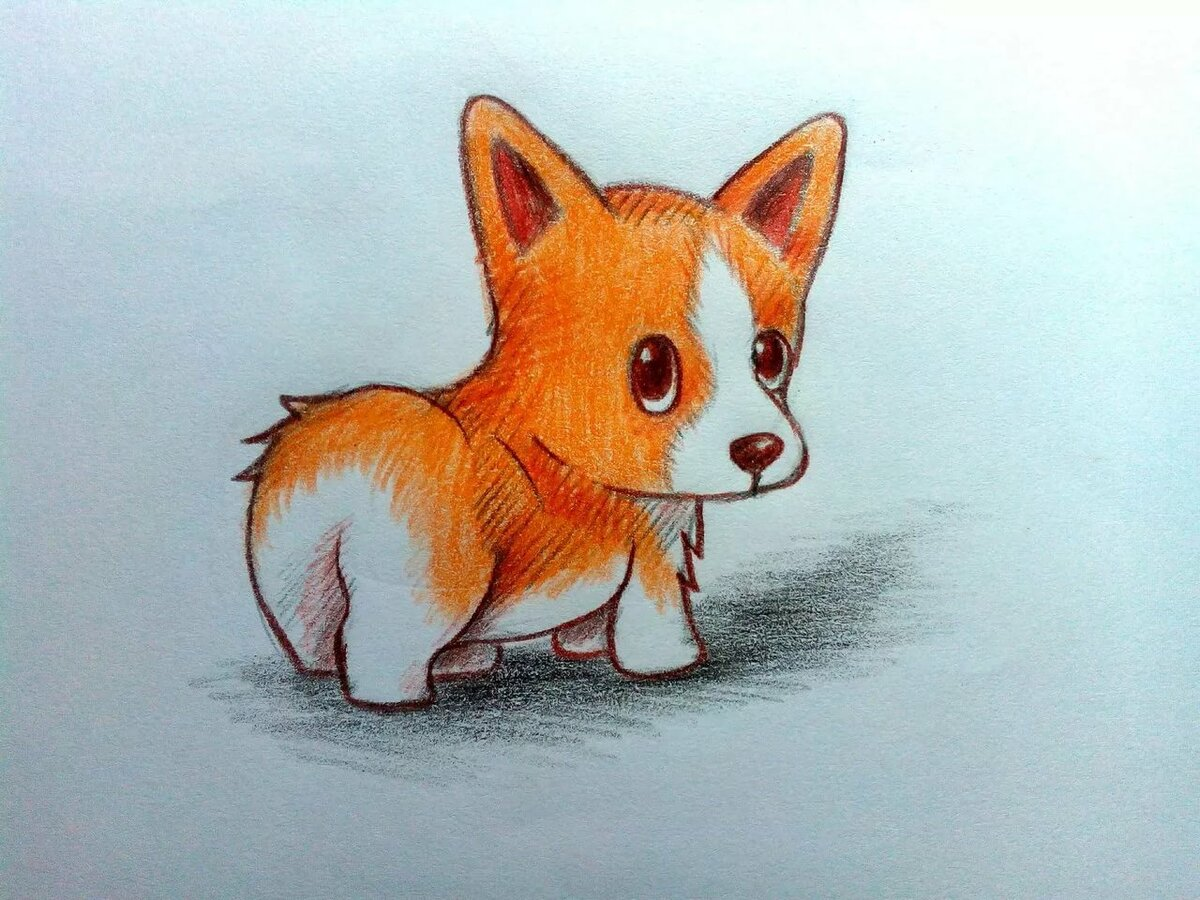 Милые картинки для срисовки зверюшки легкие