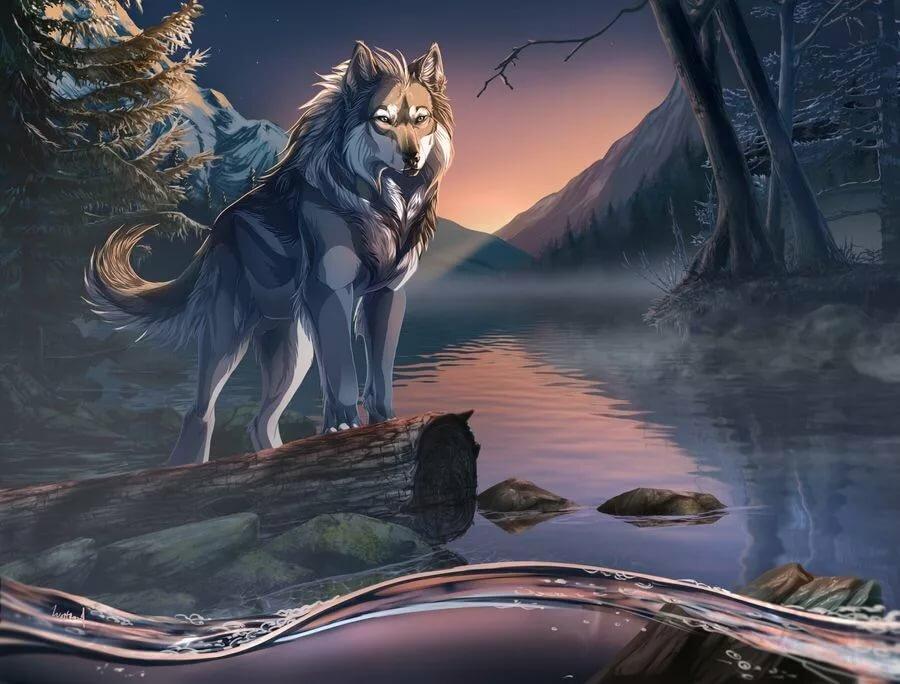 вид картинки волков арт фэнтези для оформления