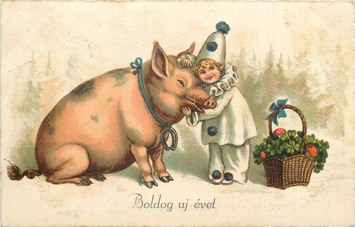 Красивые открытки с поросенком