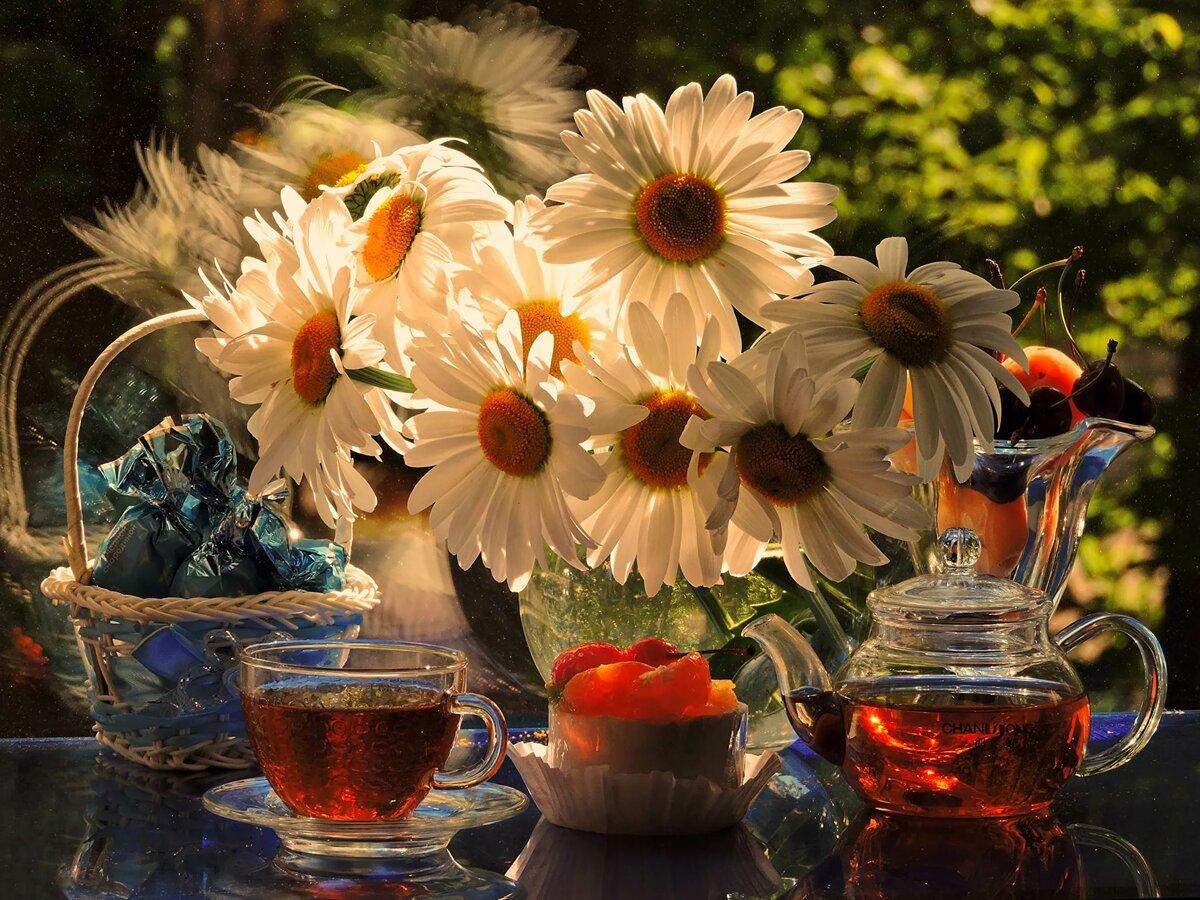 Открытки доброе утро и прекрасного дня с луговыми цветами главное