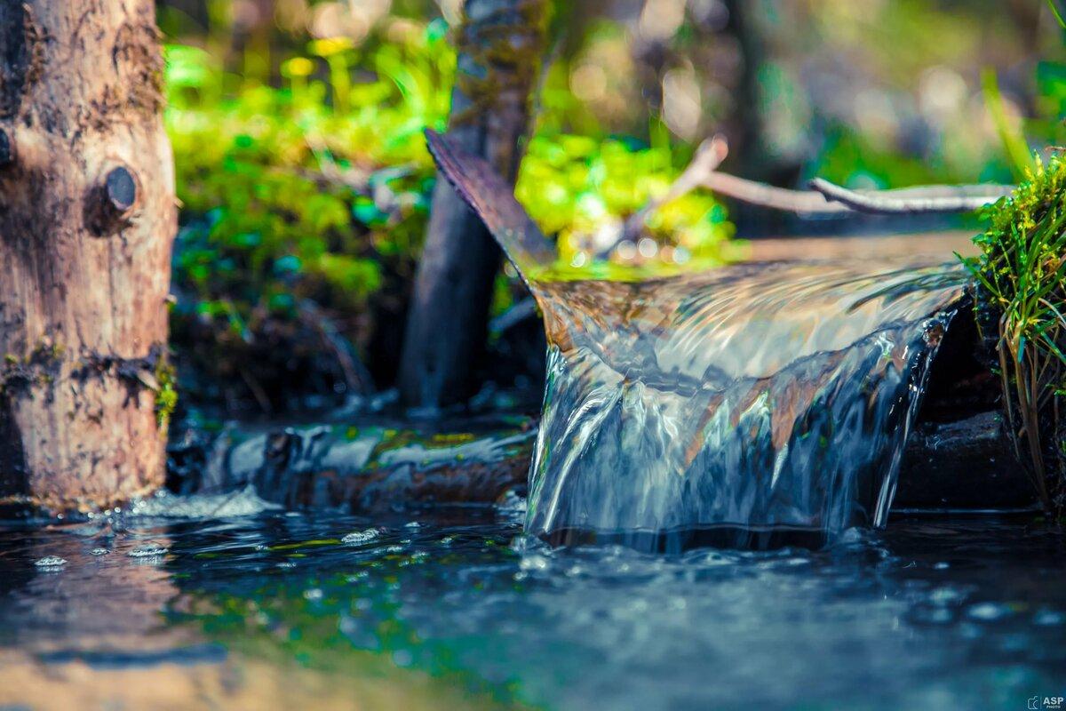 Картинка вода в ручье
