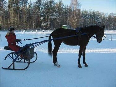 качалки упряжь лошадей