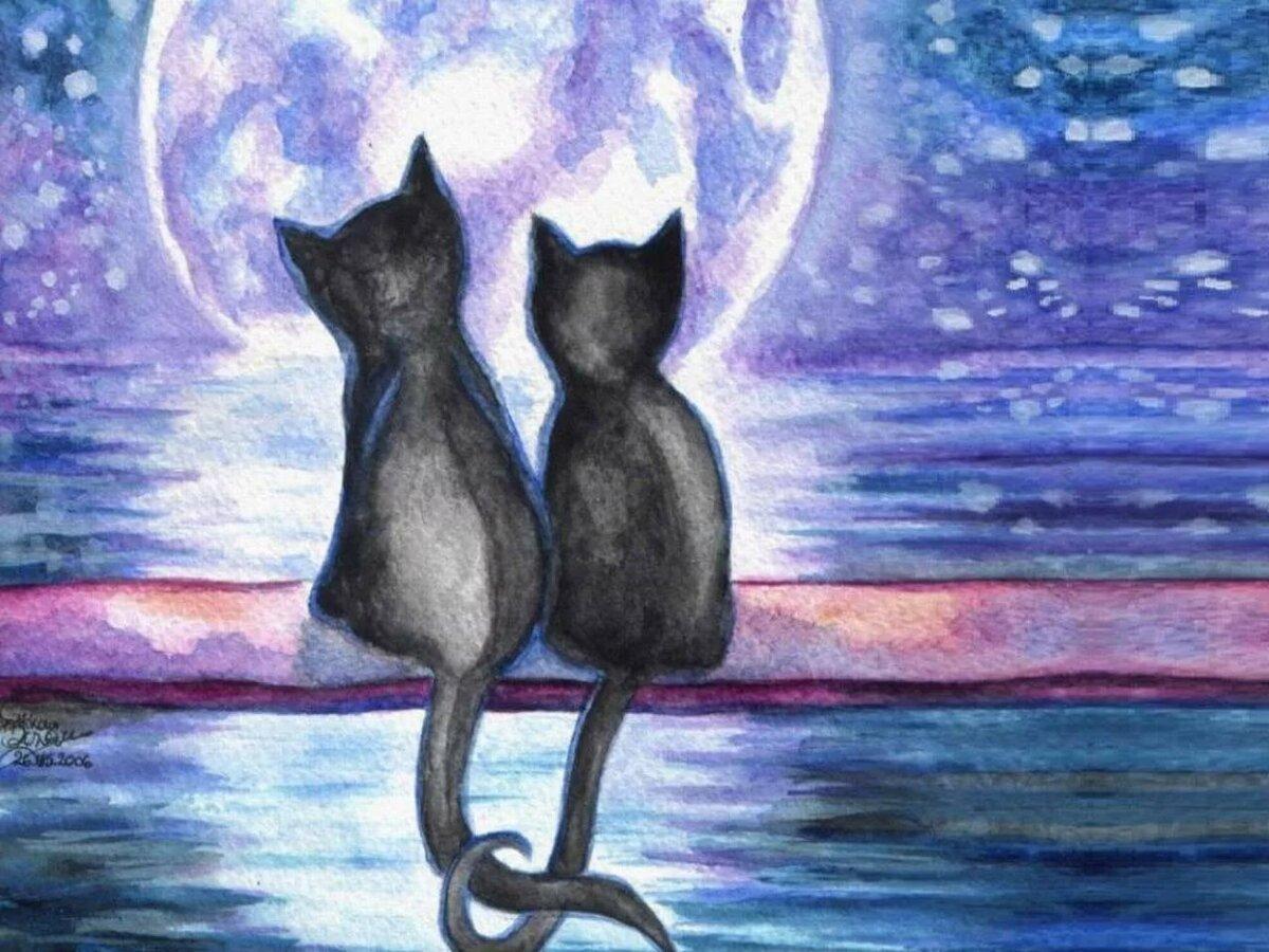 красивые рисунки котов и кошек пара создания