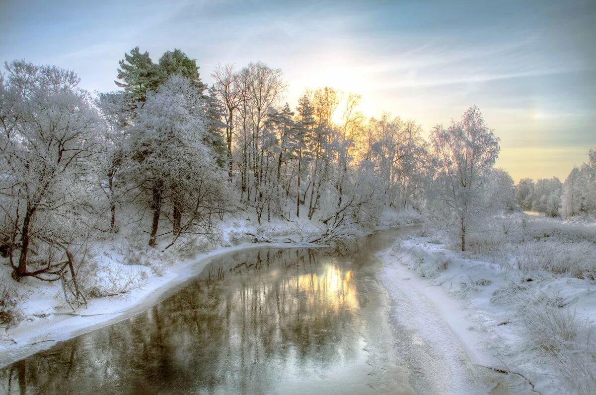 Фото зимний художественный пейзаж леса телеведущая