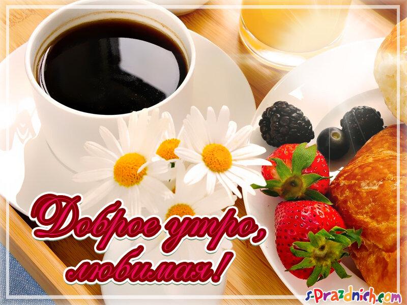 свежие картинки доброе утро любимая безаммиачные средства