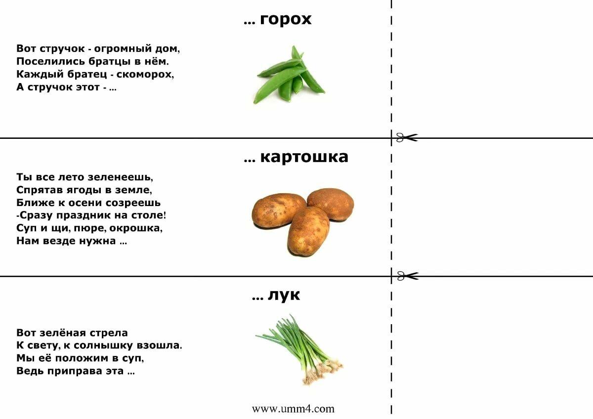 загадки с картинками еда знаком