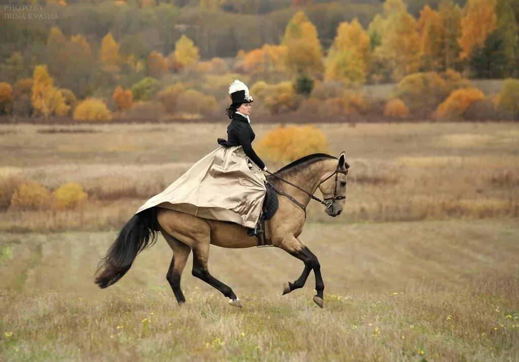 Картинка всадница на коне