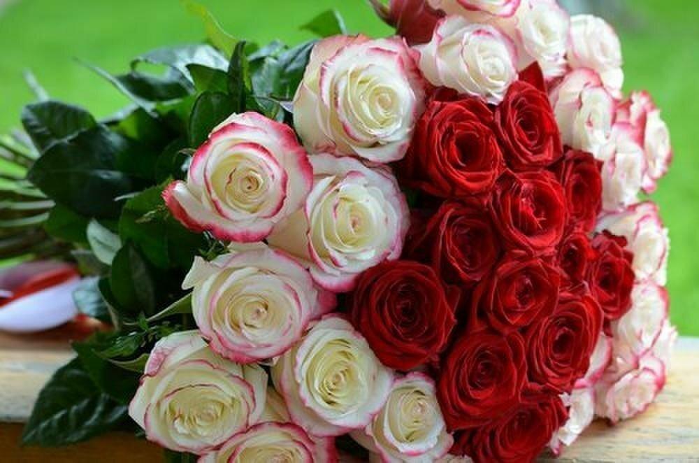 имитацией букет из роз красивые фото для поздравлений фотосъёмка замечательный повод