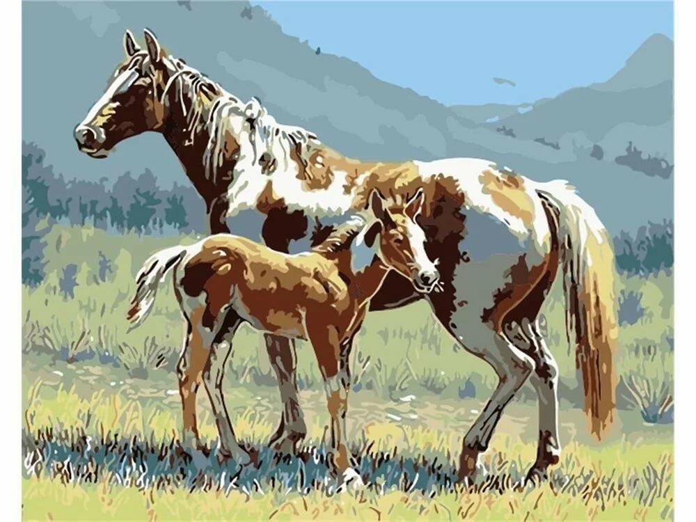 Деда мороза, картинка с изображением лошади