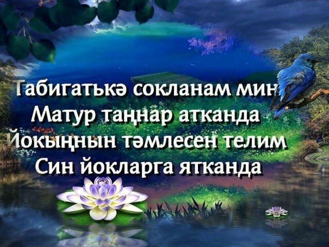 тыныч йокы тэмле тошлэр картинки на татарском прикольные лучших работ