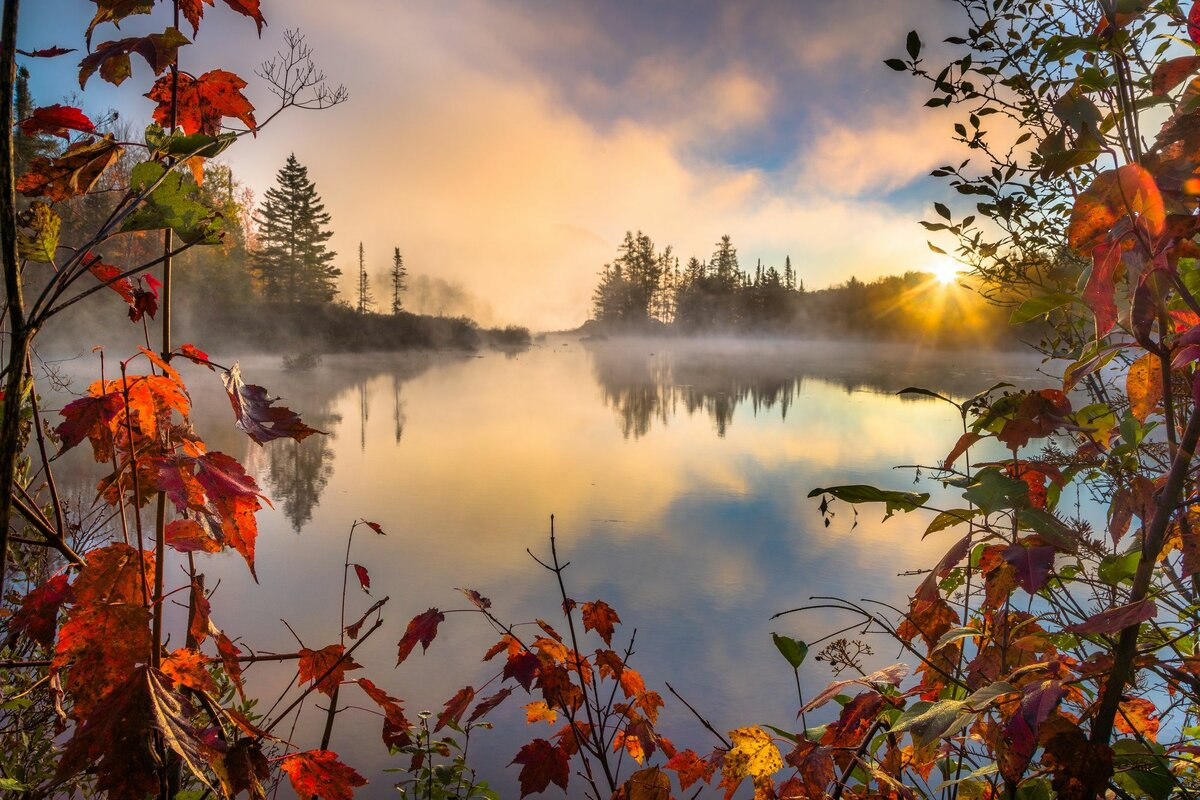 Осень картинки утро россии