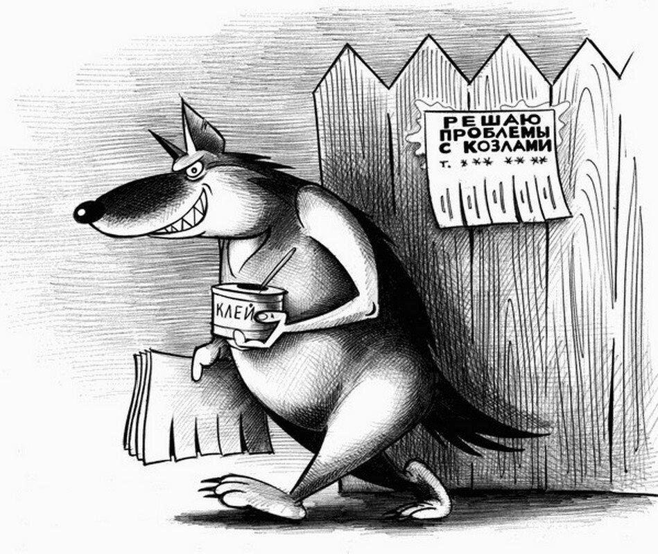 дина коллекционирует смешные картинки карикатуры юмор фото