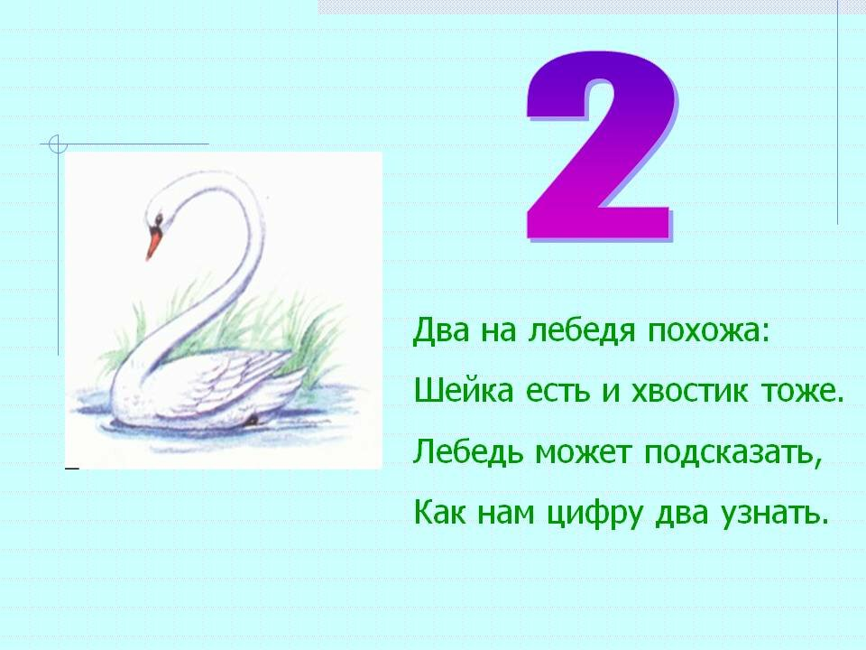 Картинка лебедь двойка