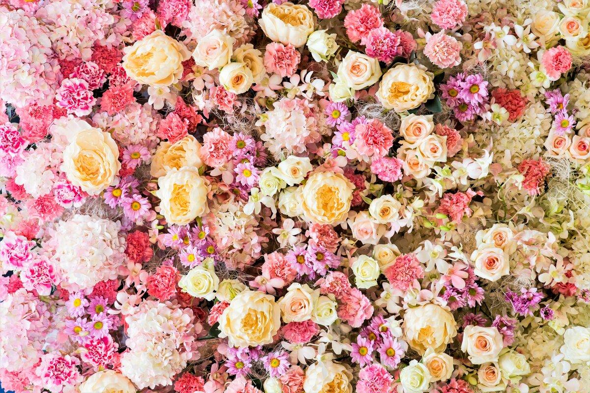 цветы в виде картинок после родов джей