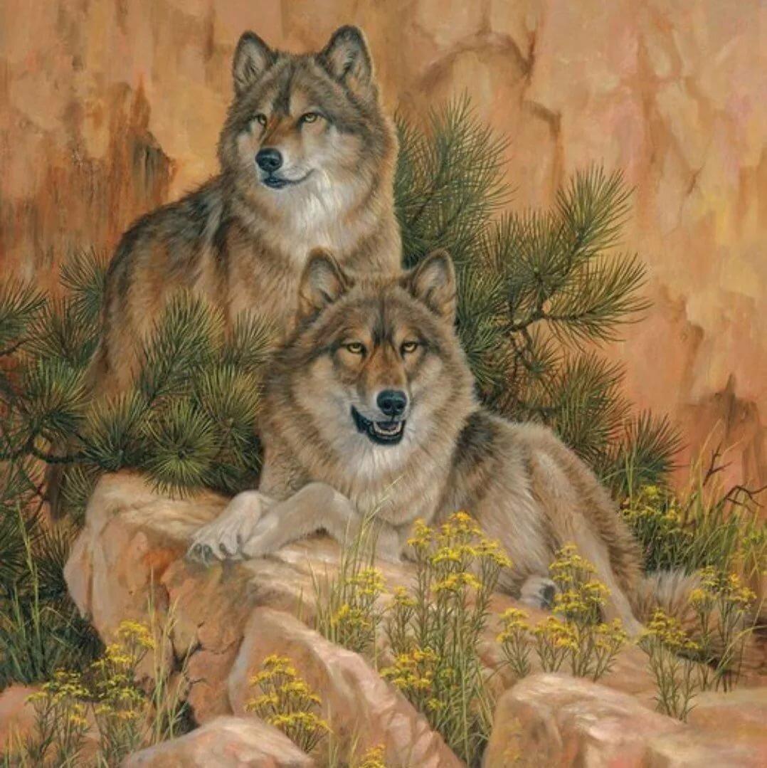 картина волки картинки
