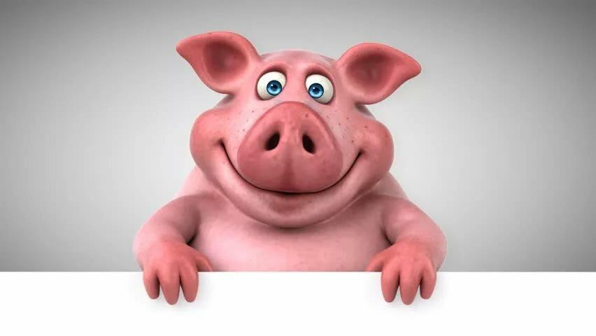 Прикольные анимированные картинки года свиньи
