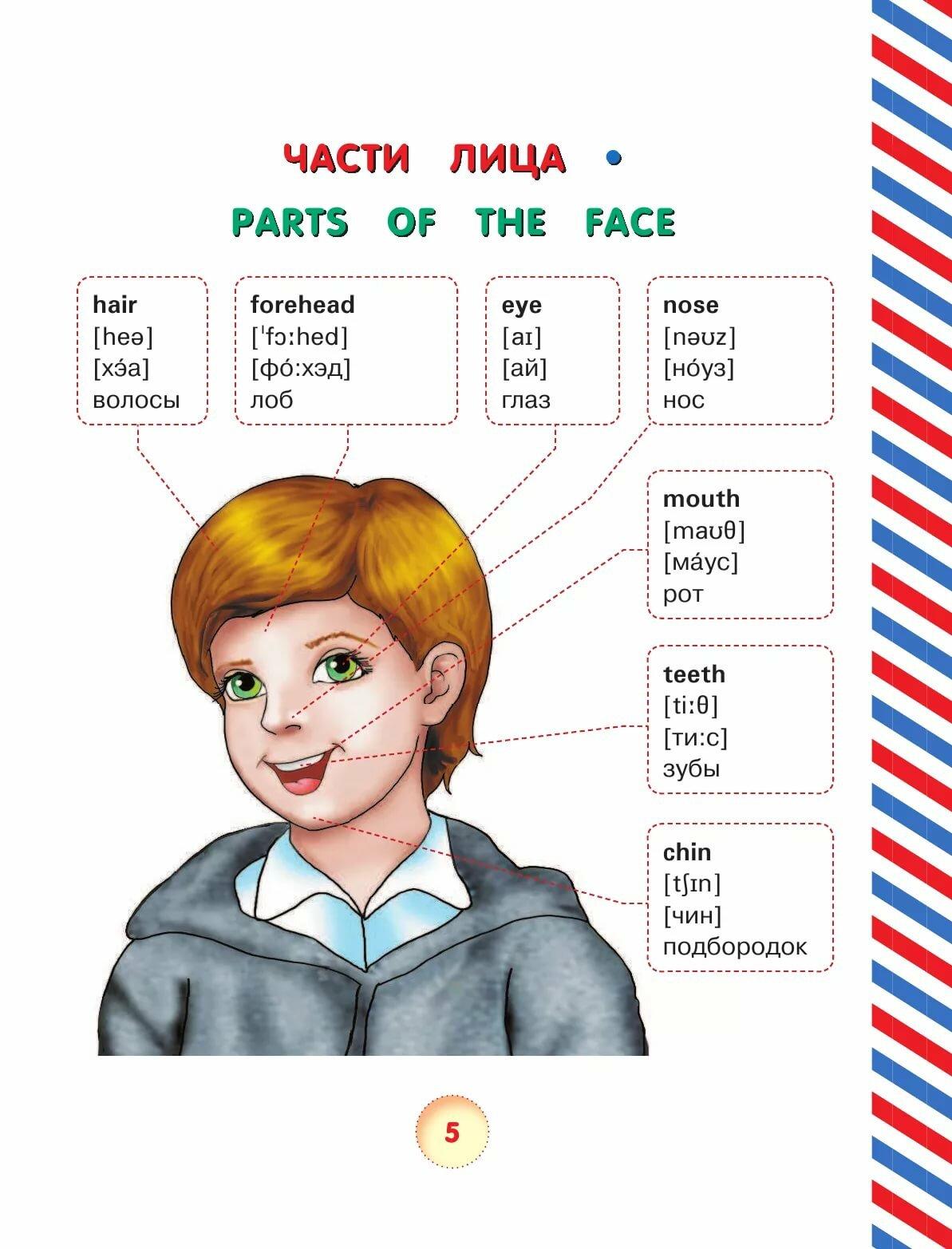 Слова в картинках английский детям