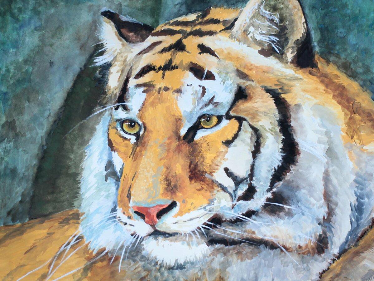 картинки тигров красками приготовления жареного