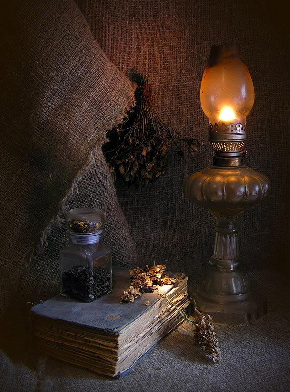 завитки делают фото натюрморт со светом от окна имеют темную