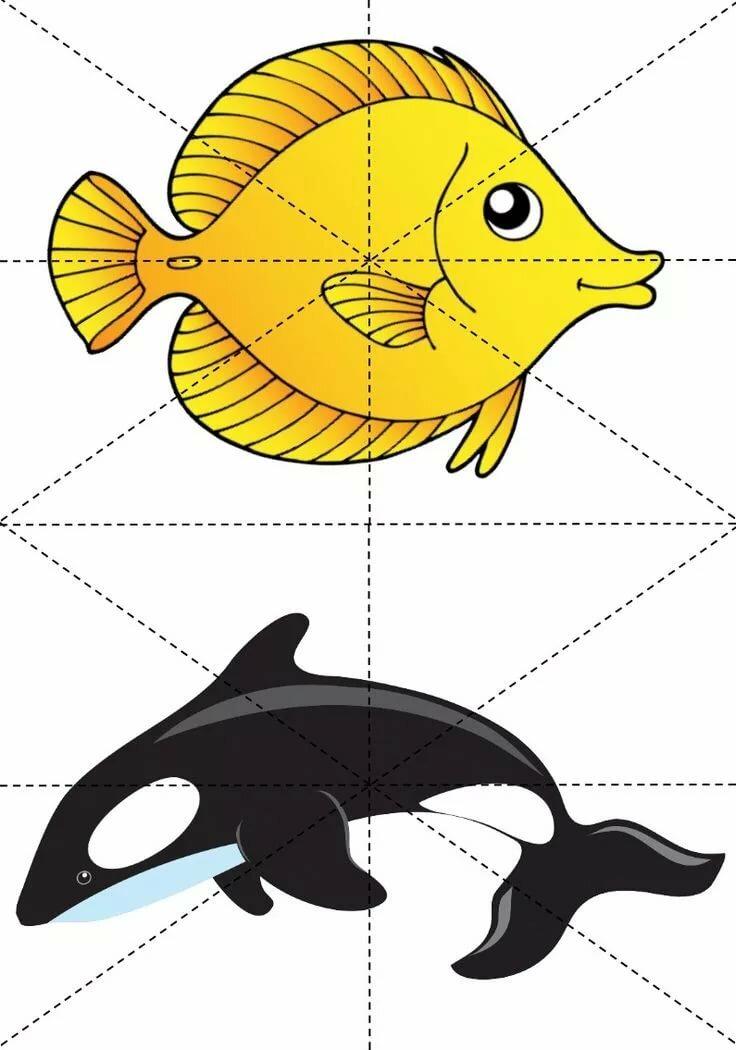 каким-то разрезные картинки морские обитатели старшая группа звезда сплетницы выбирает