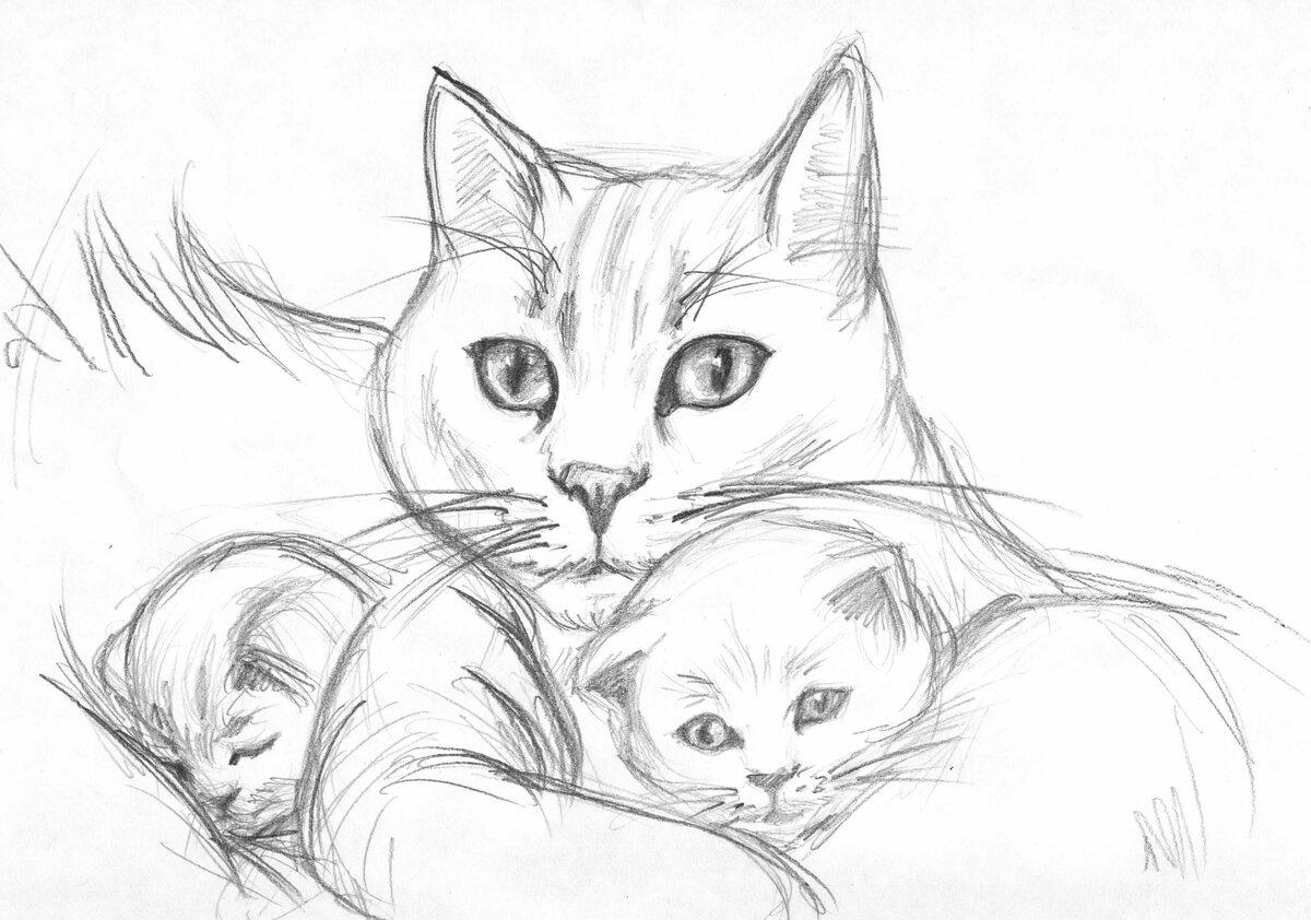 Срисовать картинки кошка и котята