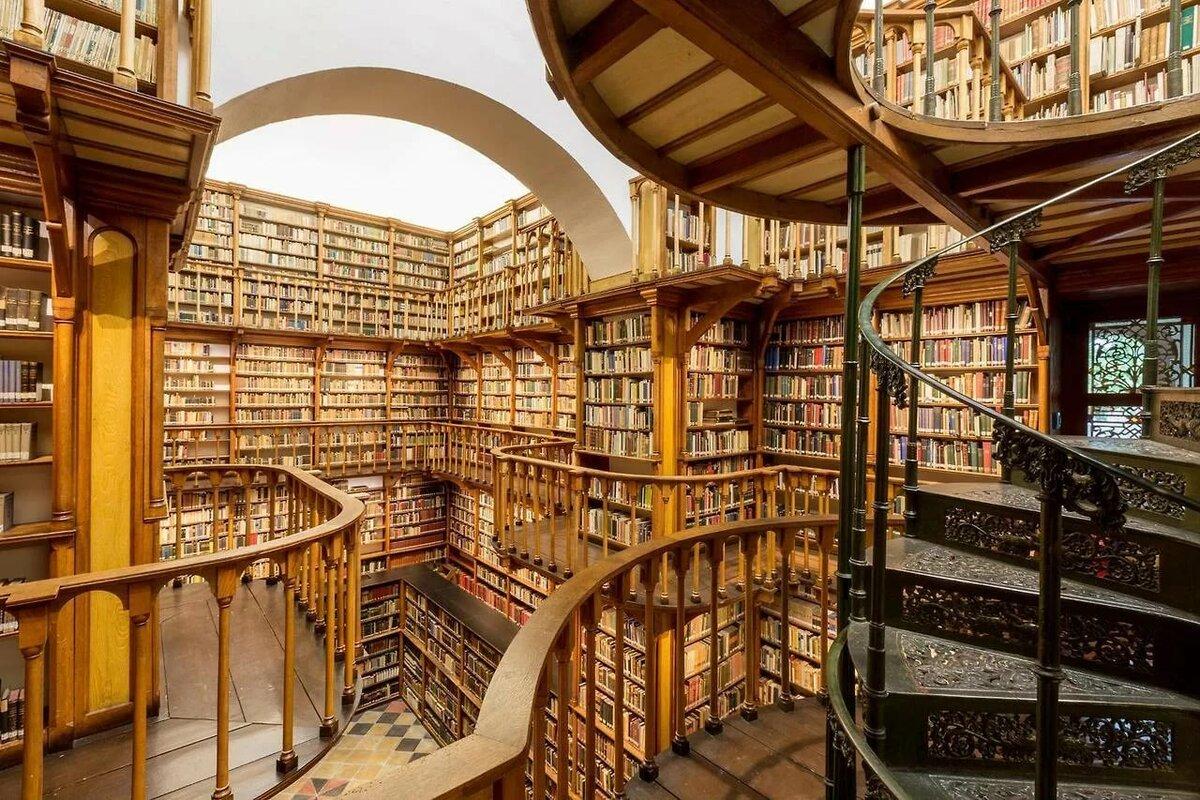 лондон самая большая библиотека в мире фото