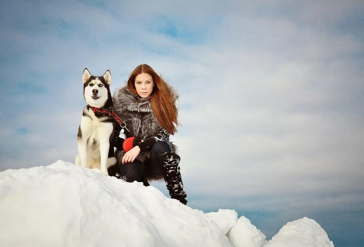 зимняя фотосессия с маламутами идеи фото амулет