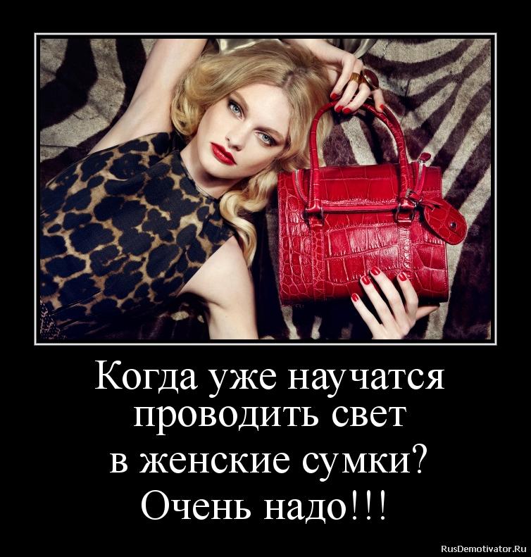 женская сумка картинка прикол данному