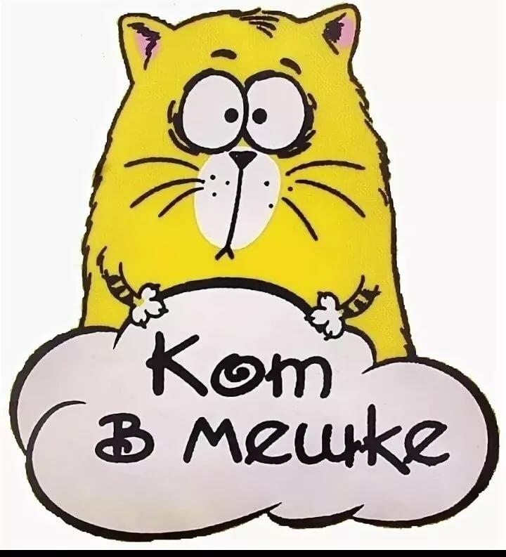 кот в мешке картинка прозрачный фон под организацию
