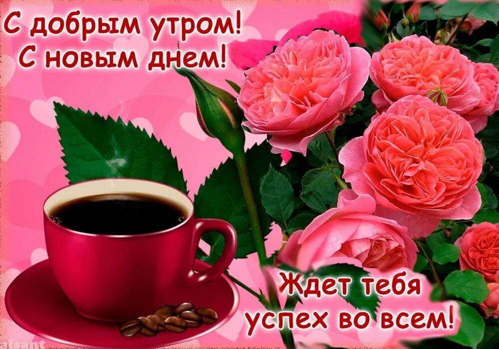 Фото открытки с добрым утром и хорошего