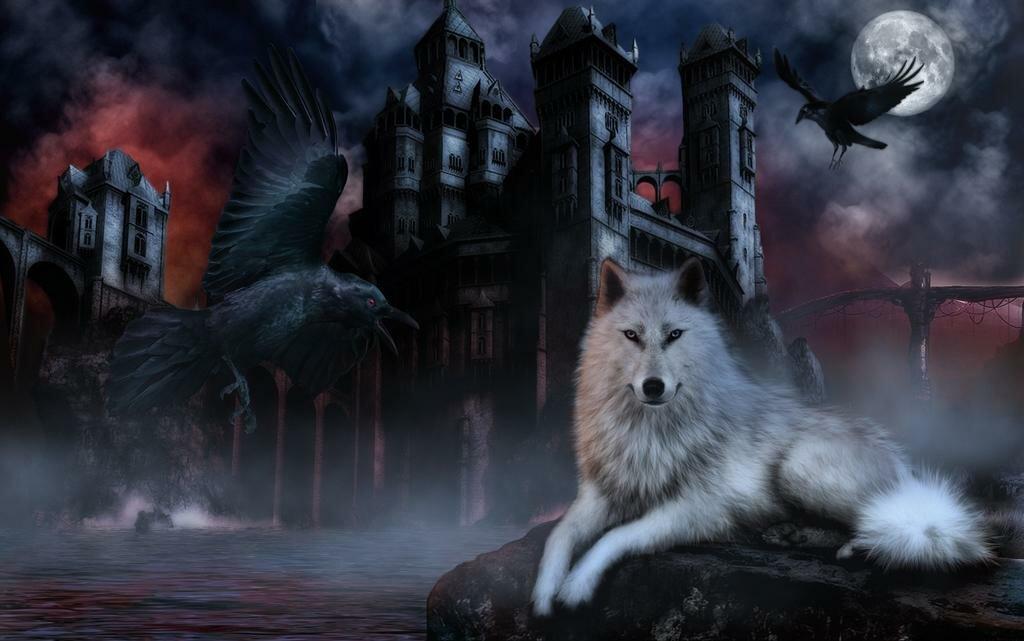 картинки волки с воронами может быть